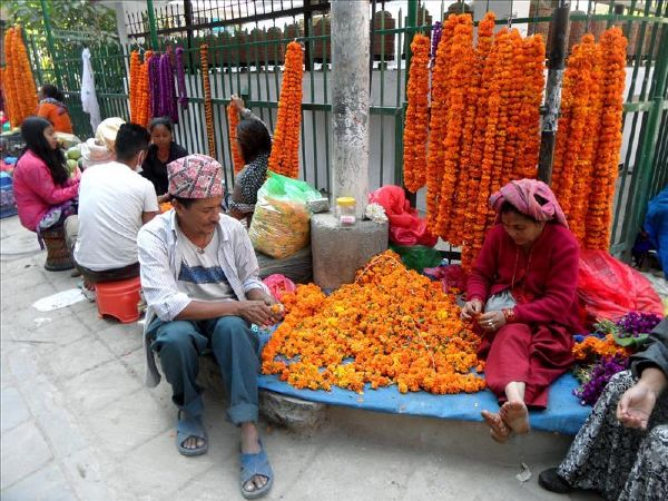 Diwali festival of lights in Kathmandu, Nepal | Kali Travel