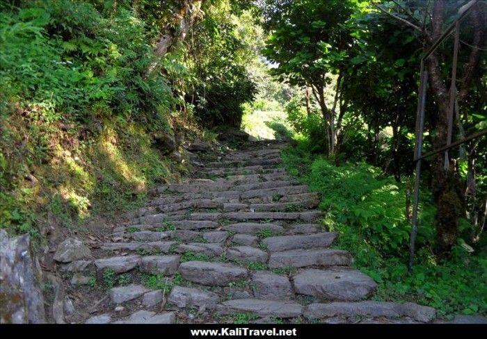 nepal-ulleri-hill-steps-poon-hill-trek