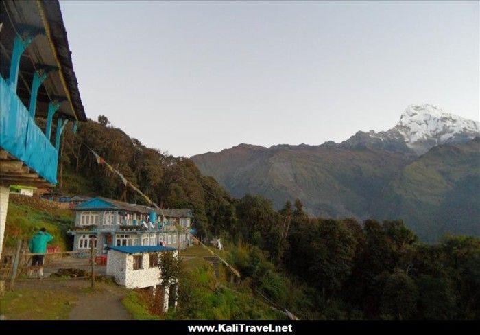 poon-hill-trek-tadapani-nepal