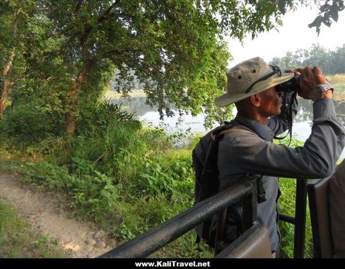 guardabosques-tigres-chitwan-national-park-nepal