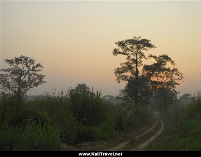 sunsets-over-the-jungle-chitwan-national-park-nepal